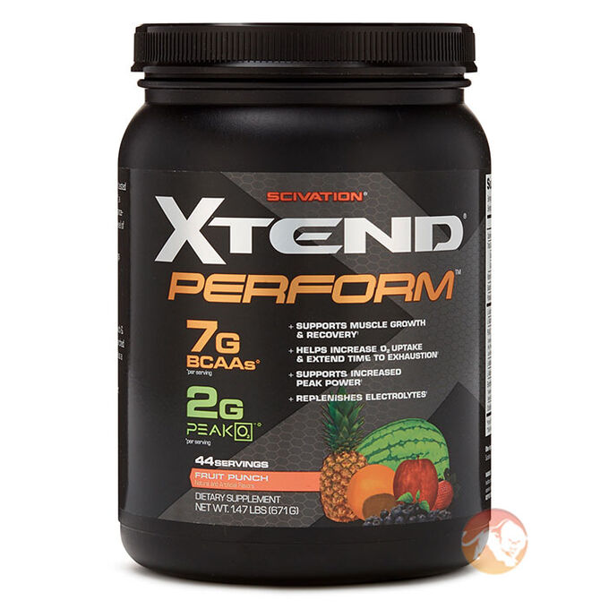 Xtend Perform 44 Servings Fruit Punch