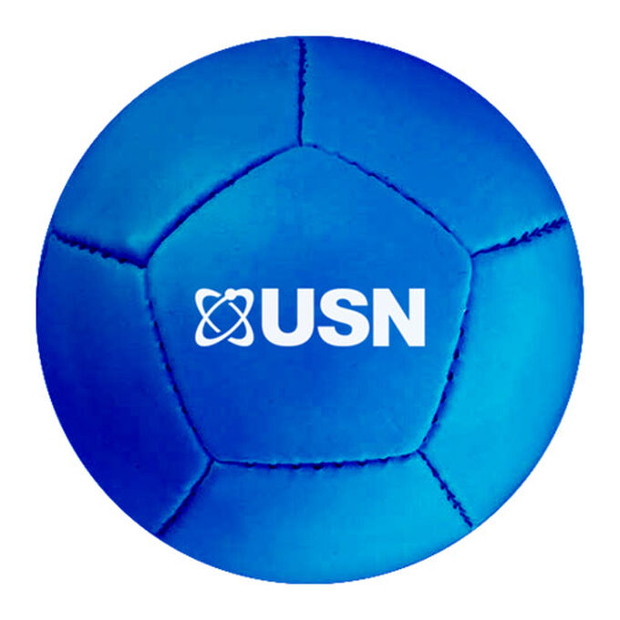 USN Mini Football