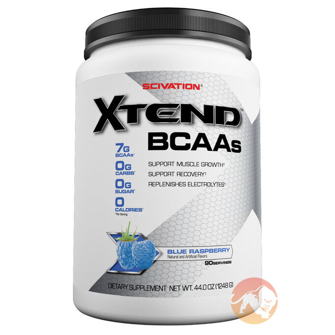 Xtend 90 Servings Fruit Punch