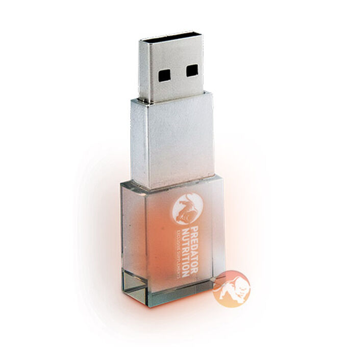 Predator Crystal USB Flash Drive 4GB Grade A