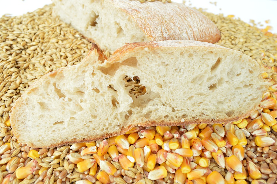 Gluten products - bread and cereals
