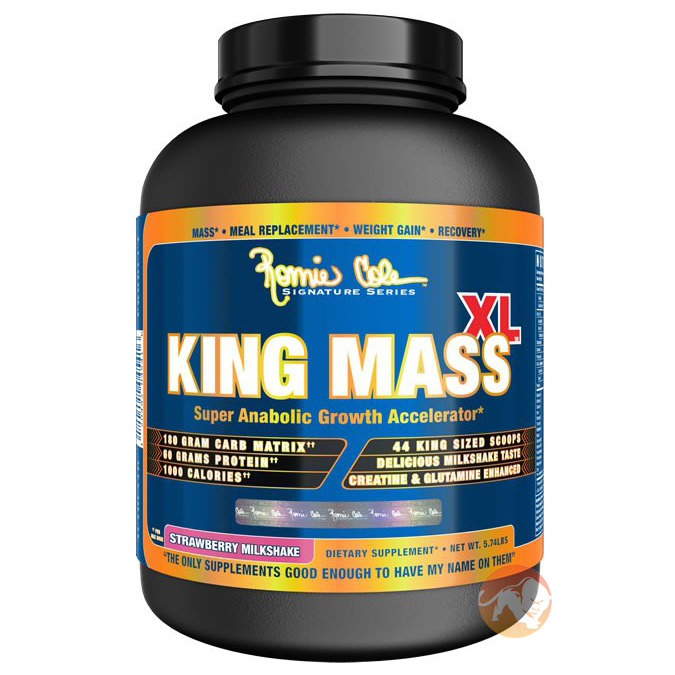 King Mass XL 15lb - Chocolate
