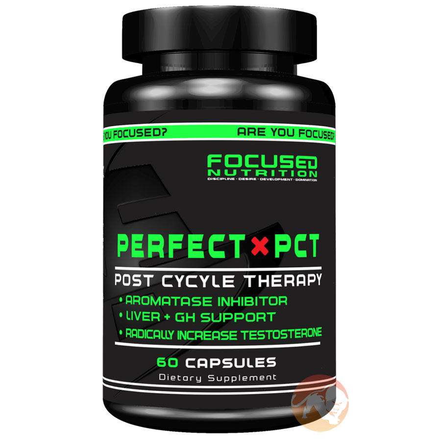 Image of Focused Nutrition Perfect PCT 60 Capsules