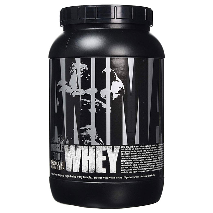Image of Universal Nutrition Animal Whey 908g Chocolate Chip