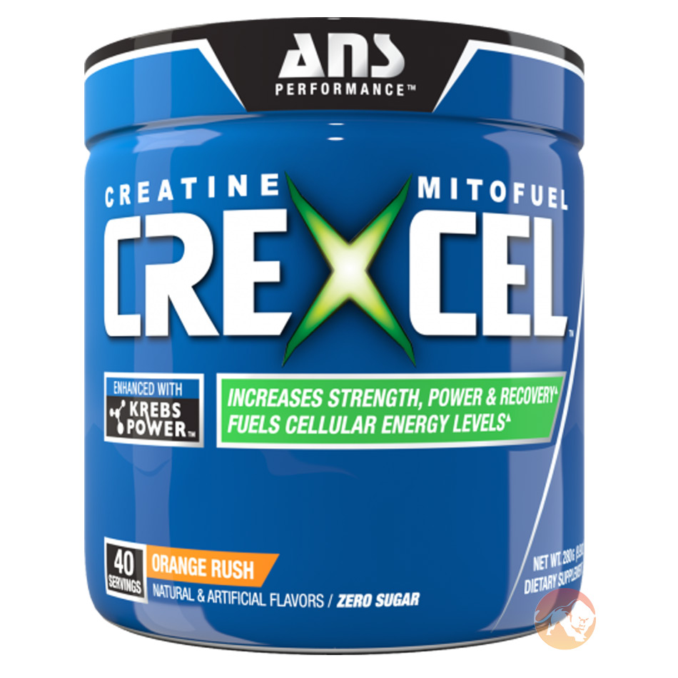 Image of ANS Performance Crexcel 30 Servings Raspberry Ice